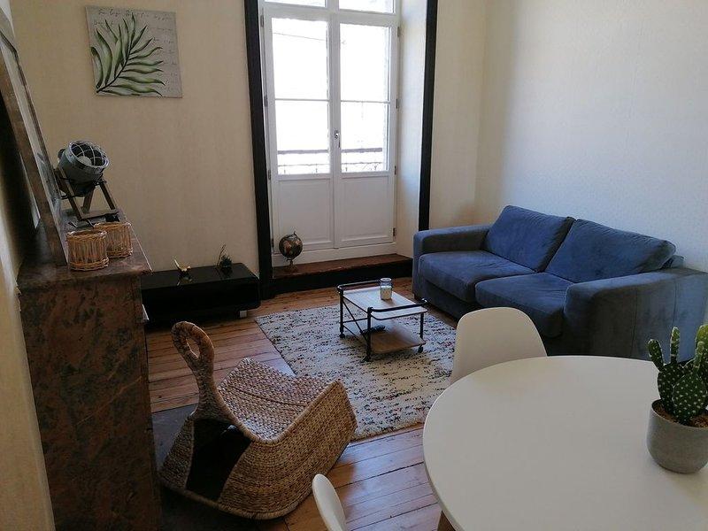 Appartement de charme au cœur de la ville, holiday rental in Lanvallay