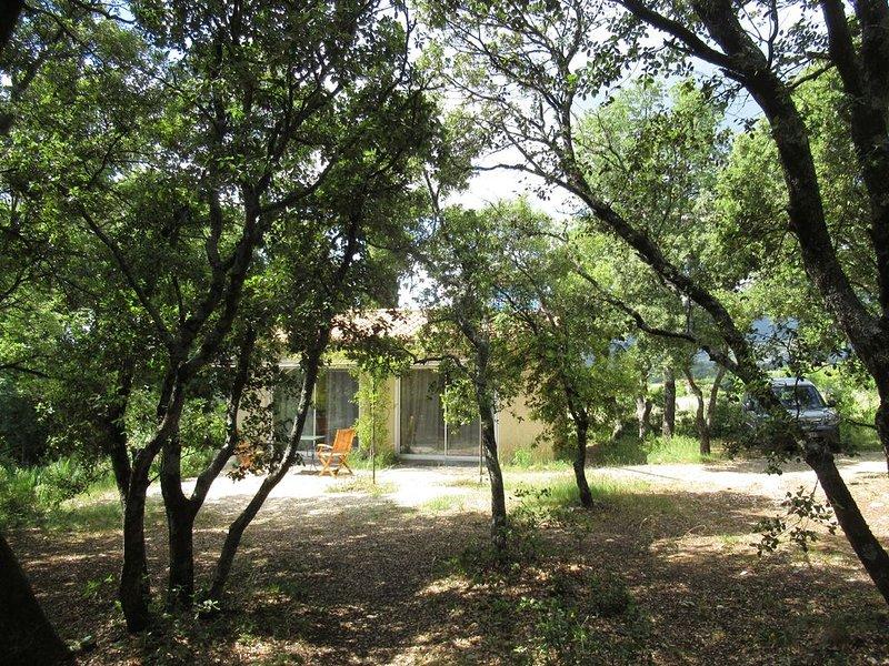 la Silène, villa en pleine campagne au pied du Mon Ventoux, holiday rental in Flassan