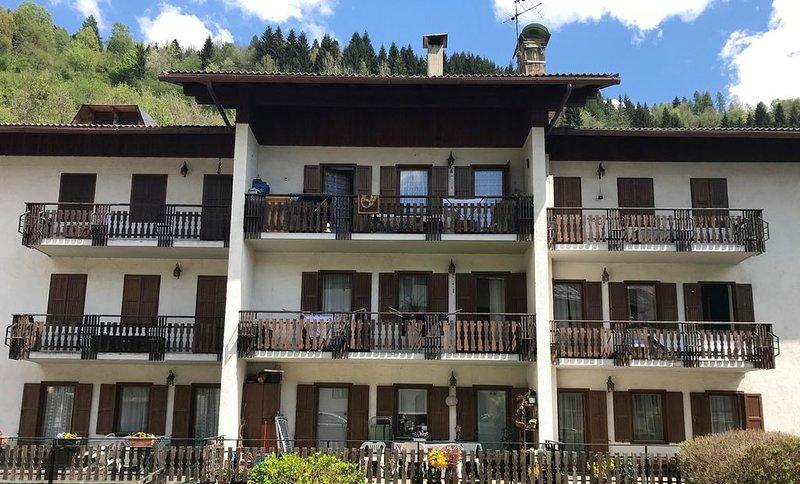 Ampia e luminosa mansarda, vacation rental in Primiero San Martino di Castrozza