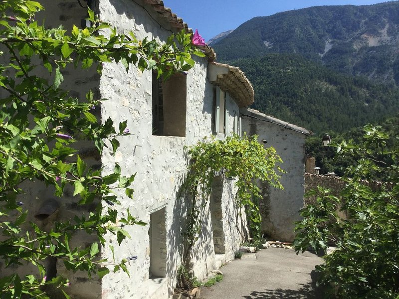 Maison de village du XVI siècle Vue Panoramique sur le MONT VENTOUX, holiday rental in Brantes