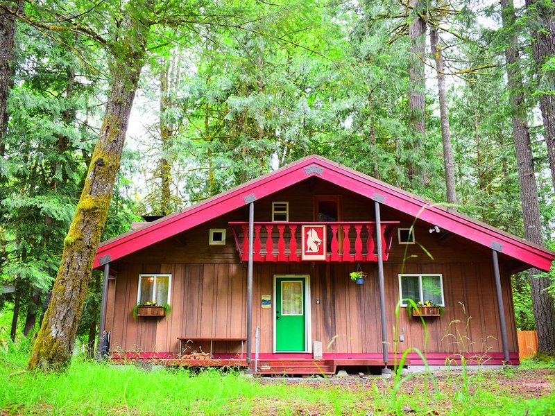 A true 'cabin by the river' on a private and woodsy acre of land, aluguéis de temporada em Packwood