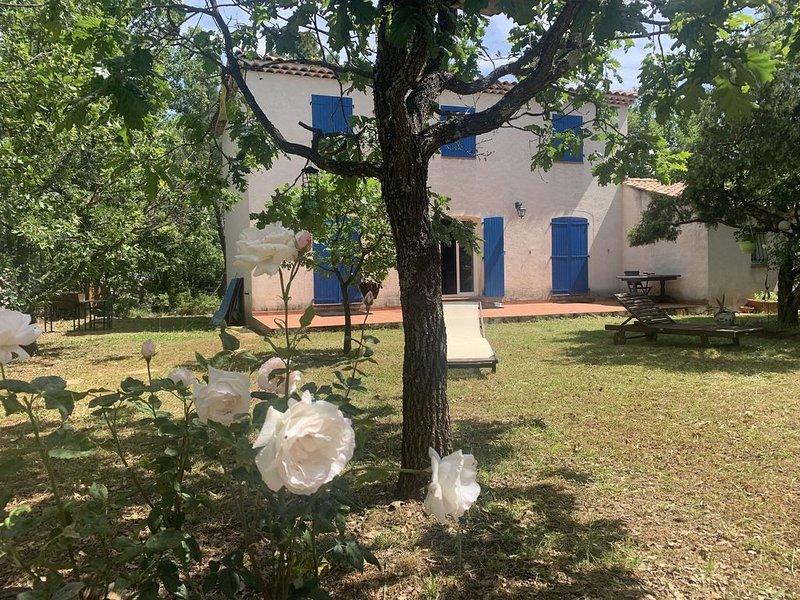 Villa  à Saint Julien le Montagnier, dans le parc naturel du Verdon  (Var. 83 ), holiday rental in La Verdiere