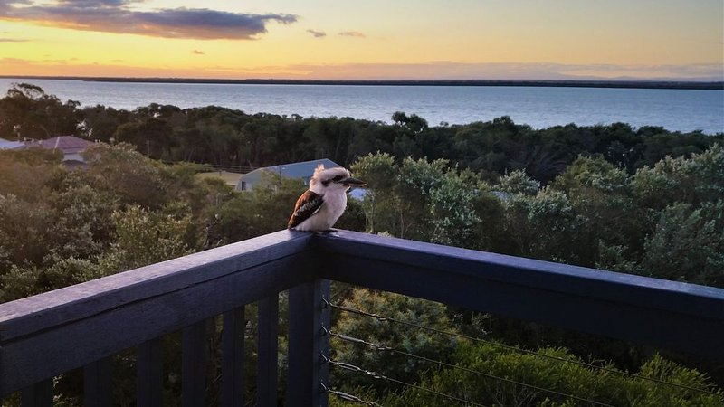 Hilltop Haven Loch Sport - 180 Degree view of Lake Victoria, holiday rental in Paynesville