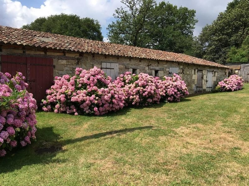 Maison de Campagne - 4ch - Poitiers/Dienné, vacation rental in Chauvigny