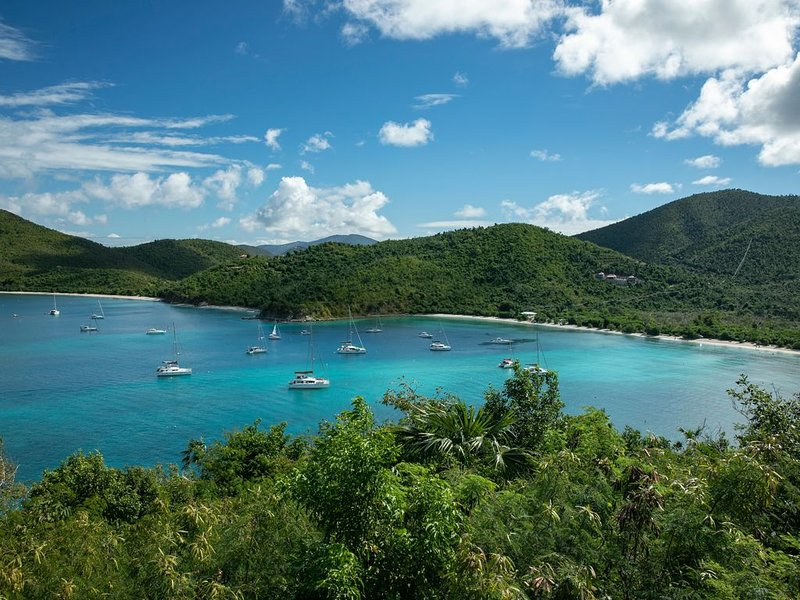 Walk to world famous Maho Bay! Privacy, views, pool, 4 equal king size bedrooms., alquiler vacacional en Jost Van Dyke