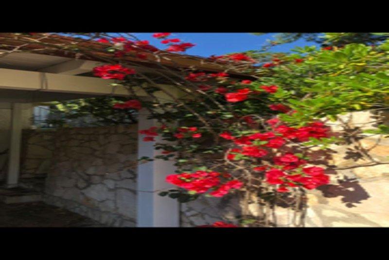 Casa autonoma, immersa in una pineta, a pochissimi metri da una splendida baia., holiday rental in Marina di Pulsano