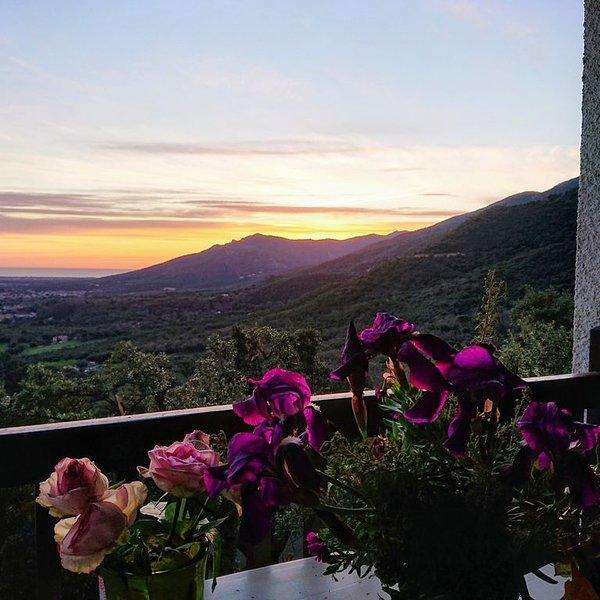 Gîte avec terrasse dans mas proche de la mer, de la montagne et l'Espagne, holiday rental in Villelongue-dels-Monts