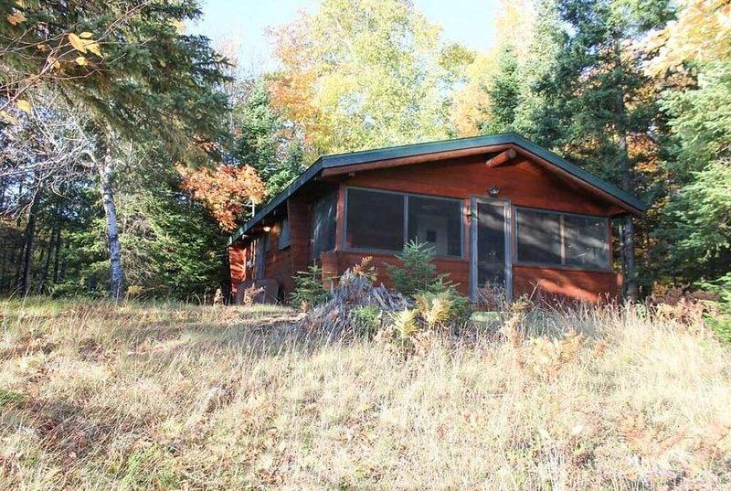 Wolf Cabin, location de vacances à Iron River