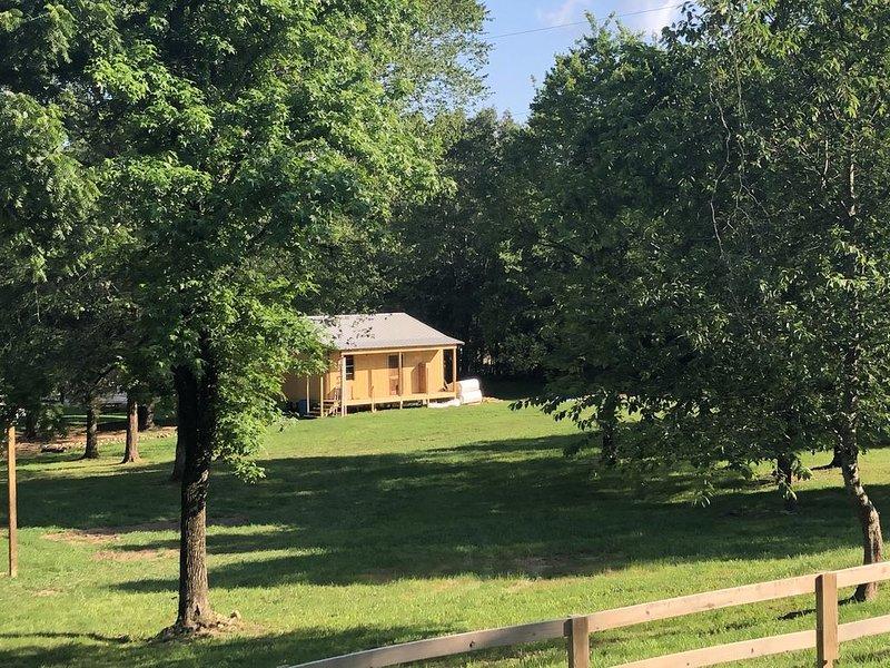 Caddo luxury cabin, holiday rental in Pencil Bluff
