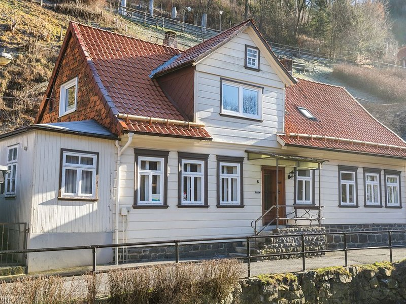 Alluring Holiday Home in Wildemann with Private Terrace, holiday rental in Wildemann