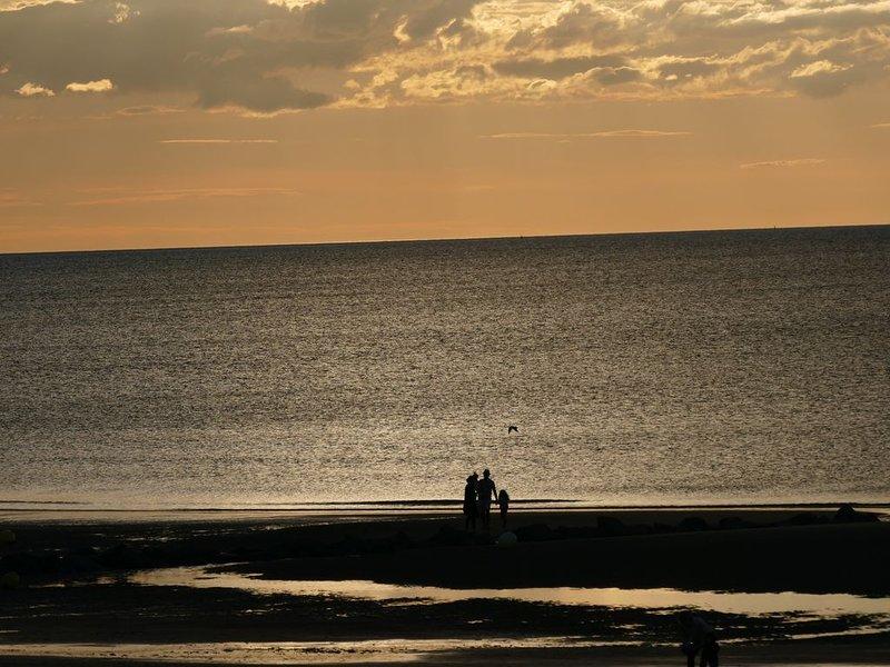 Rez de jardin T2+Cabine accés direct à la mer, vacation rental in Cabourg