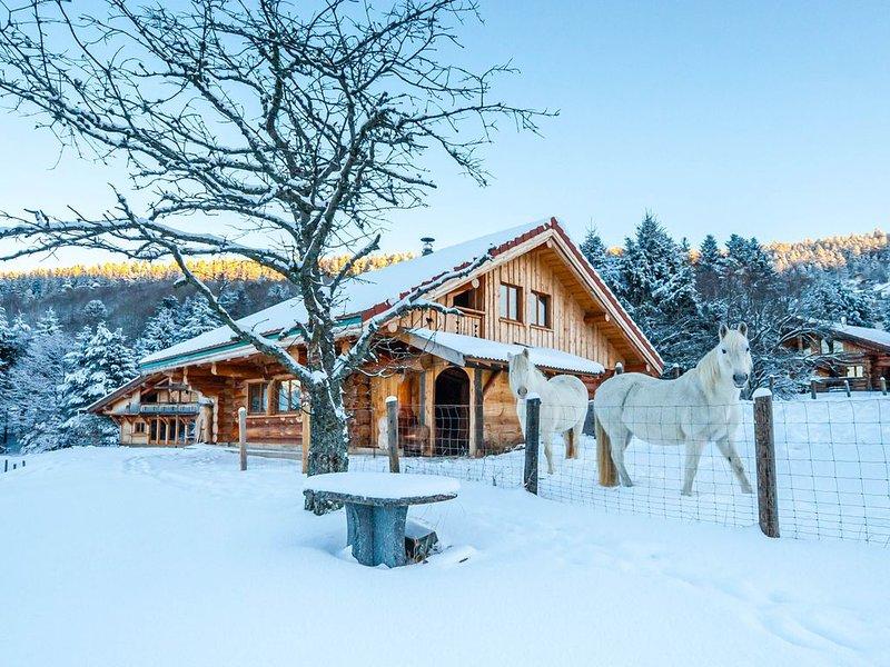 Chalet en rondins avec jacuzzi, accès piscine et sauna, proche de La Bresse, holiday rental in Basse-sur-le-Rupt