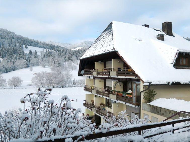 Apartment Wohnung Dietsche  in Menzenschwand, Black Forest - 2 persons, 1 bedro, holiday rental in Menzenschwand-Hinterdorf