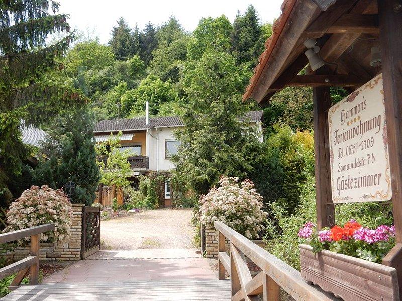 im Weinort Monzingen an der Nahe - 5km - Bad Sobernheim.. FAHRRÄDER GRATIS!!!!!!, alquiler de vacaciones en Wolfstein