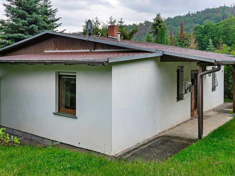 Stylish holiday home in the Harz, forest setting terrace fireplace garden detach, holiday rental in Neuwerk