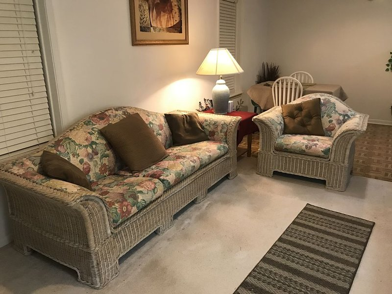Dahlonega Mountain Apt #1  Four Rooms with Queen & Double Beds 1-2 persons, holiday rental in Dawsonville