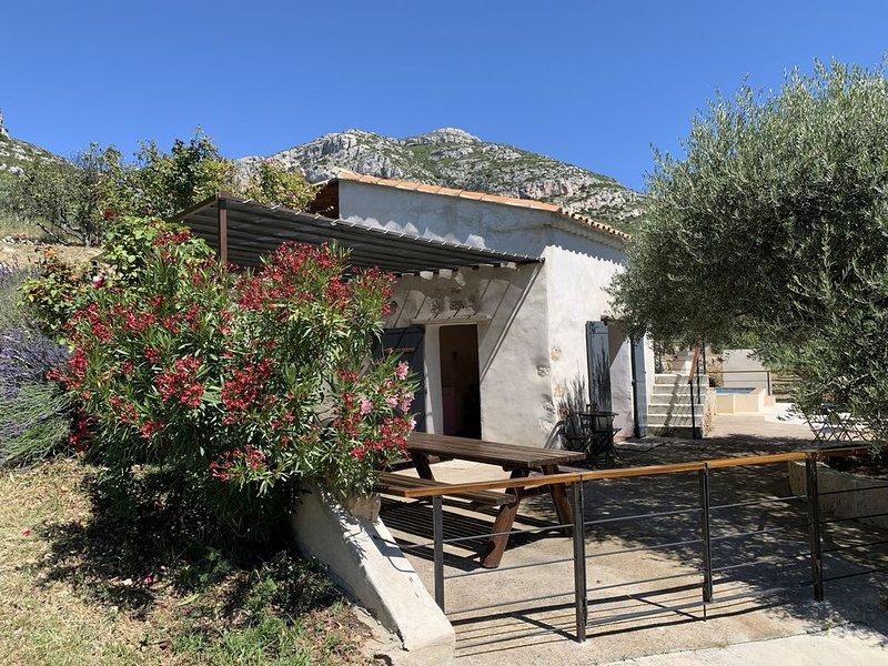 Insolite cabanon en pierres, holiday rental in Roquevaire
