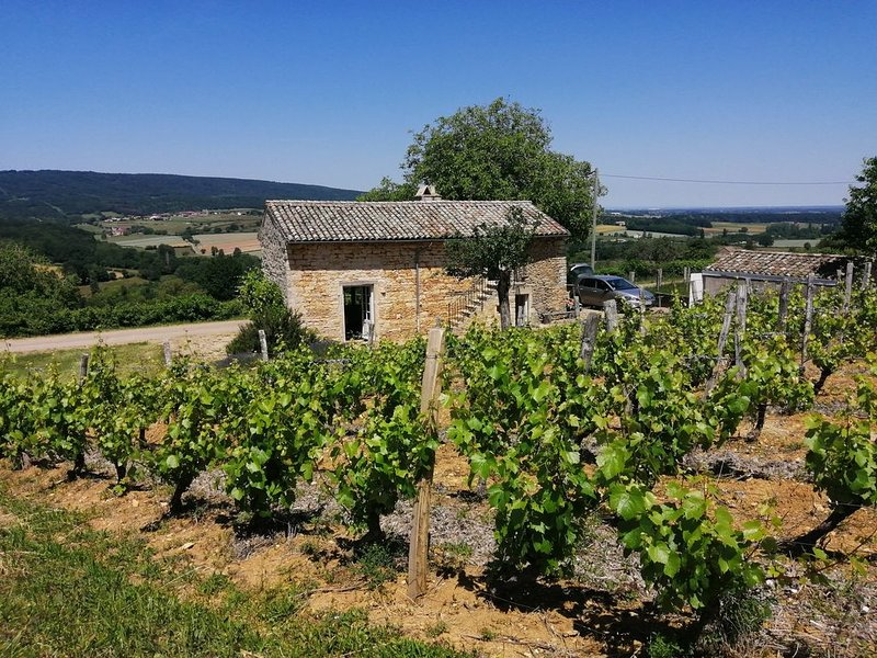 Une maison de vigneron en Bourgogne sud, holiday rental in Saint-Germain-du-Plain