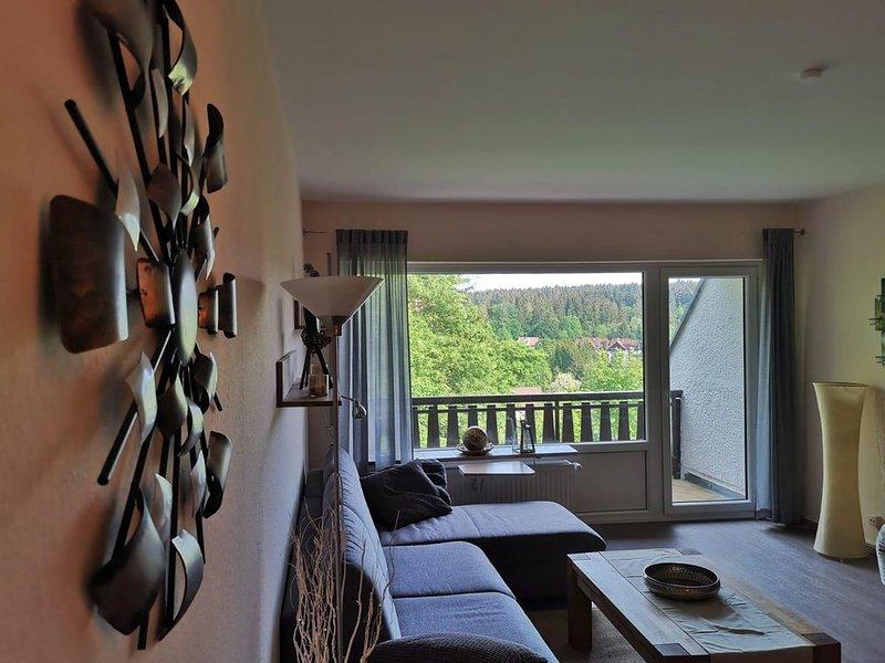 Große, moderne Ferienwohnung in Hahnenklee-Bockswiese., holiday rental in Hahnenklee-Bockswiese