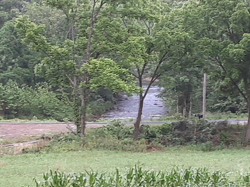 Enjoy beautiful Elk River!, alquiler vacacional en Butler