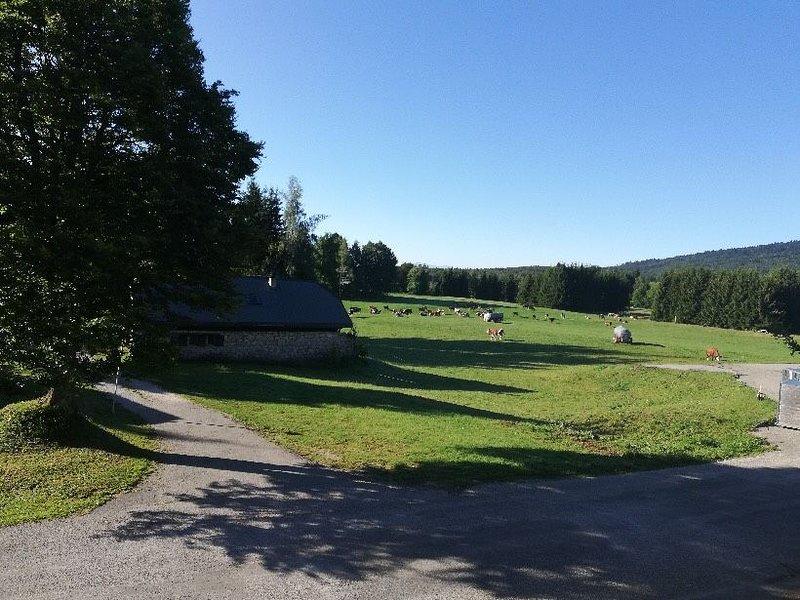 Gîte spacieux aux portes de la nature, holiday rental in Aillon-le-Jeune