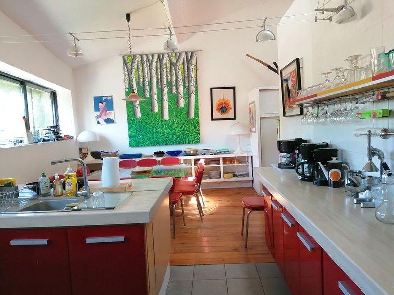 gîte dans une galerie d'art en pays cathare, holiday rental in Belesta