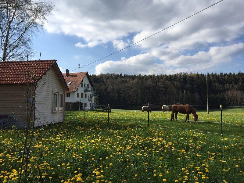 Urlaub auf dem Nikolinenhof - kl. Ferienhaus, casa vacanza a Aitrach
