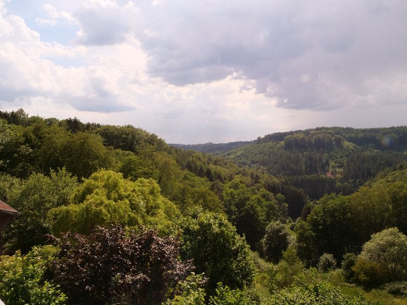Appartement duplex, grande terrasse, Parc Naturel des Vosges du Nord, vacation rental in Meisenthal