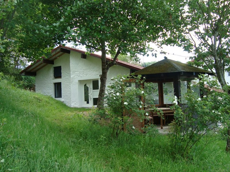 Gite de Moulin Maurt, holiday rental in Hadol