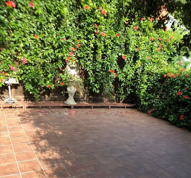 Beautiful Beverly Canyon1 bedroom Retreat with private garden  &spacious patio., holiday rental in Beverly Hills