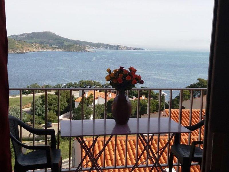 Face à la mer, appartement rénové, climatisé, avec terrasse, Parking, WIFI, alquiler de vacaciones en Banyuls-sur-mer