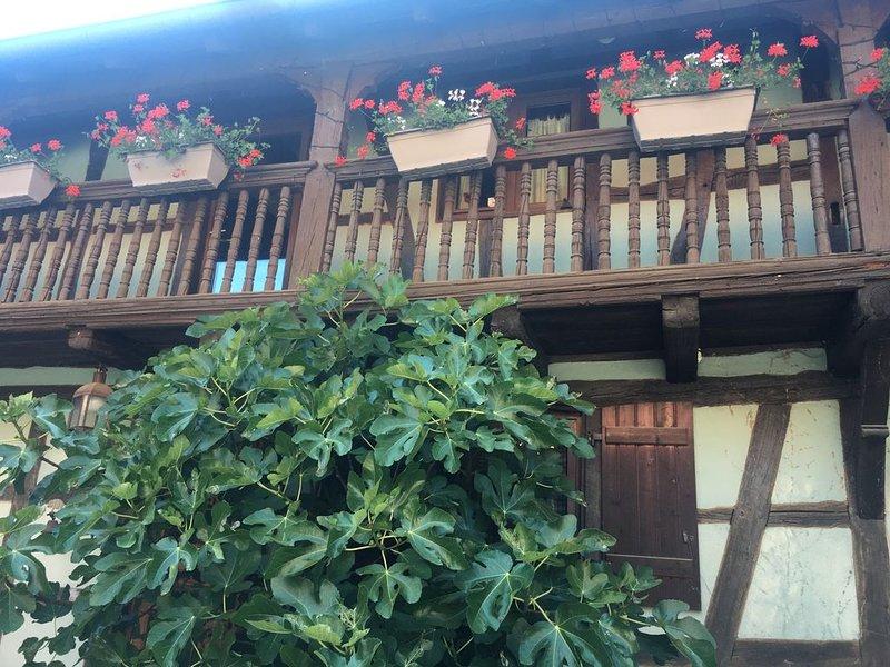 Gîte dans une écurie alsacienne, location de vacances à Ohlungen