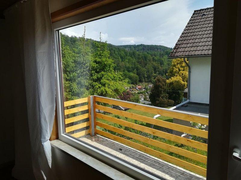 Romantischer Bungalow mit schönem Ausblick, location de vacances à Hohegeiss