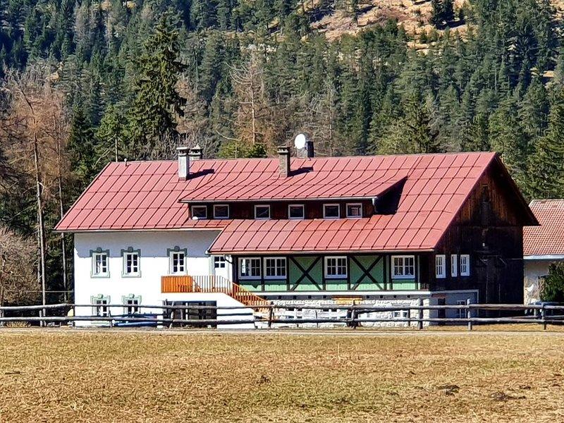 De nussi,s chalet 1 Bach, vacation rental in Elbigenalp