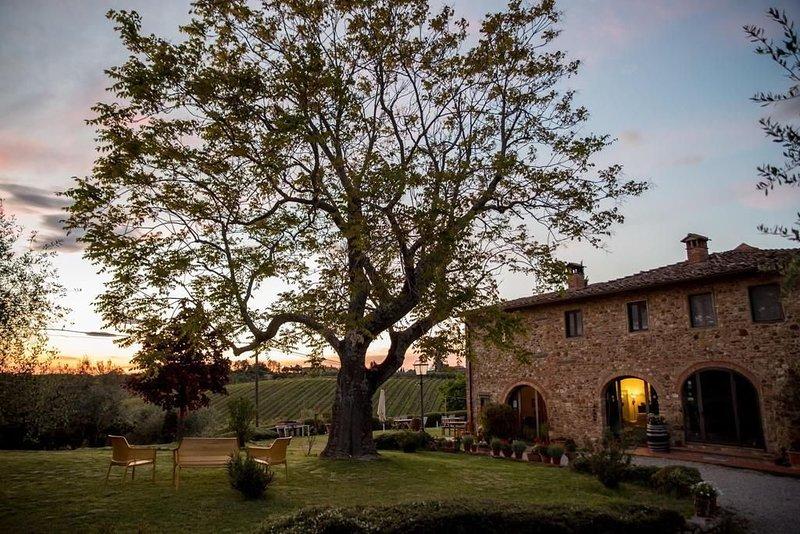 Agriturismo Macinello - Verde, vacation rental in Bargino