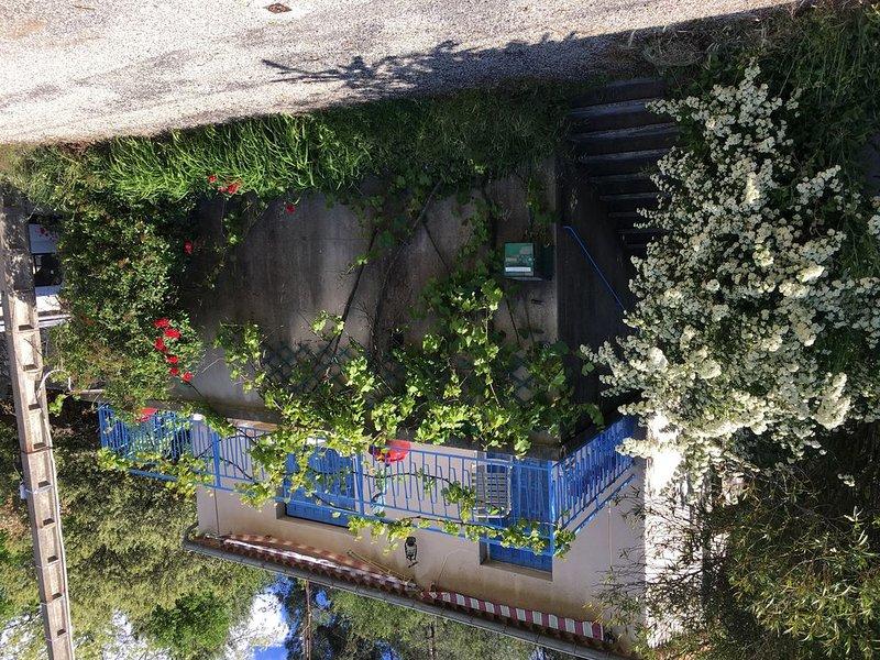 Maison de charme dans le parc naturel des Cévennes, holiday rental in Saint-Michel-de-Deze