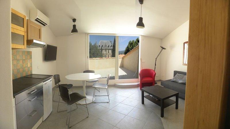 Appartement avec terrasse donnant sur le château de CHARLEVAL, location de vacances à Charleval