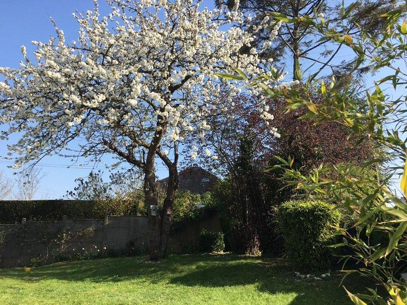 Charmante maison, avec jardin, proche du centre historique, casa vacanza a Bayeux