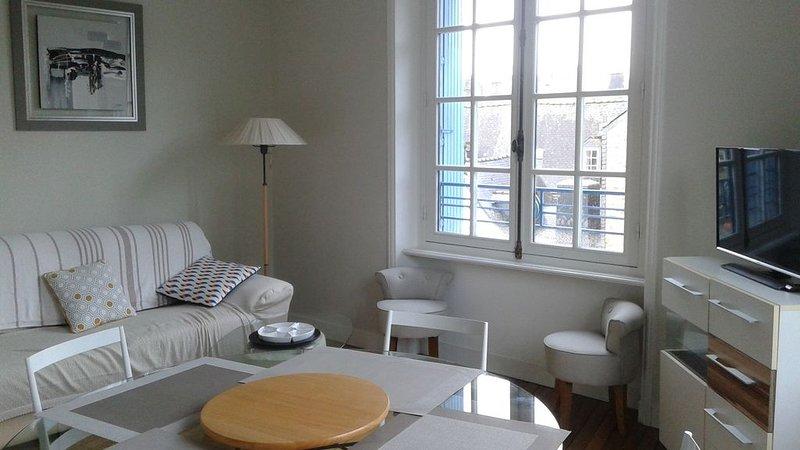 Appartement lumineux au coeur du Centre Historique de Quimper, vacation rental in Quimper