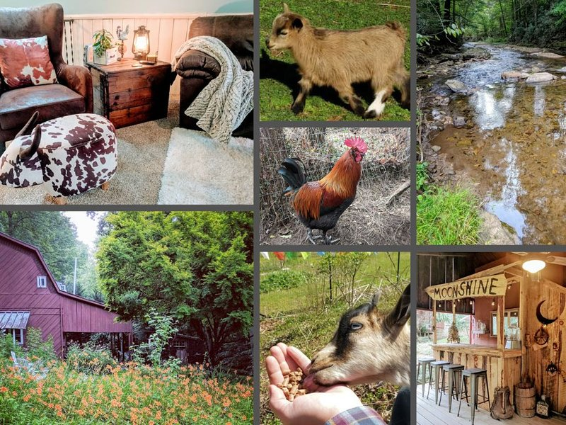 BARN HOUSE with River, Goats, Fire Pit, & Hot Tub! – The River's Call Inn, holiday rental in Flat Rock