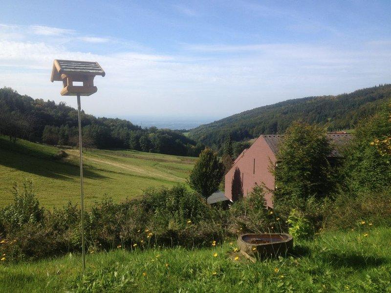 Urlaub mitten in der Natur mit traumhaften Blick ins Rheintal, alquiler vacacional en Sasbachwalden