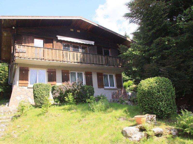 GITE DE MONTAGNE - PROCHE GERARDMER - 10 Couchages, holiday rental in Plainfaing