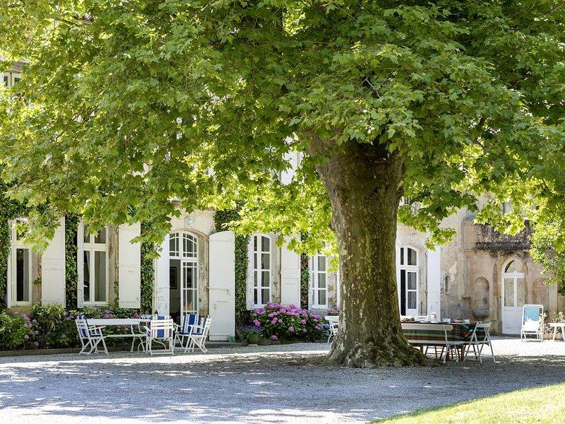 Maison de Maître XIXe s - piscine - parc 1 hectare - wifi, holiday rental in Montmaur