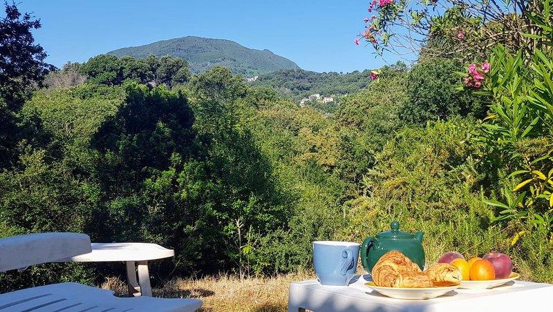 Maison de campagne au cœur du poumon vert de la Corse, holiday rental in Canale-di-Verde