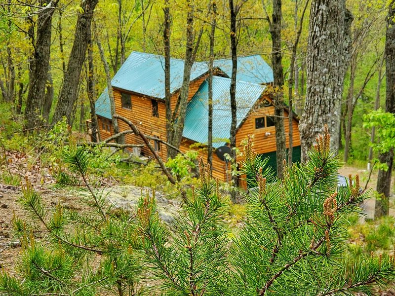 Potomac Cabin, Riverfront, 7 acres, sleeps 10, hot tub, vacation rental in Cresaptown