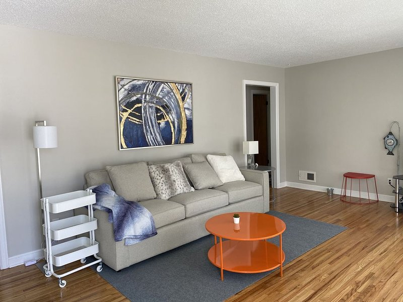 Cozy, modern house, one block to Mayo/st.Mary!!, location de vacances à Rochester