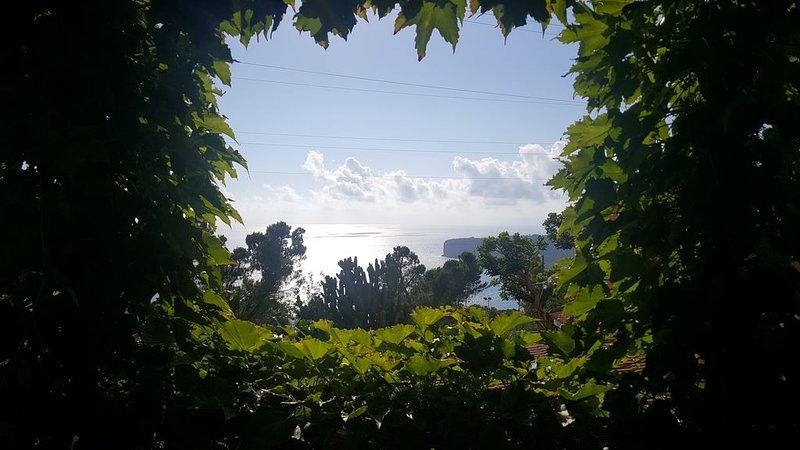 Casa mare e tramonto, vacation rental in San Nicola Arcella