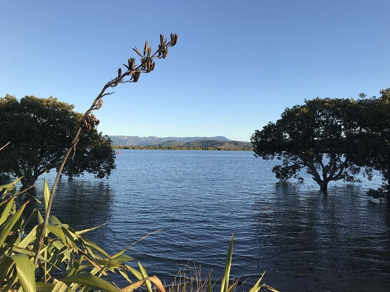 Sleeps 12, spacious holiday home, great indoor outdoor flow., holiday rental in Whitianga