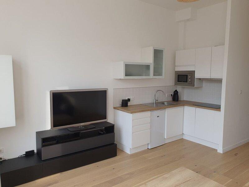 Appartement T2  Solférino, holiday rental in Lambersart