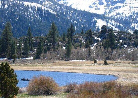 1 bedroom accommodation in June Lake, location de vacances à June Lake
